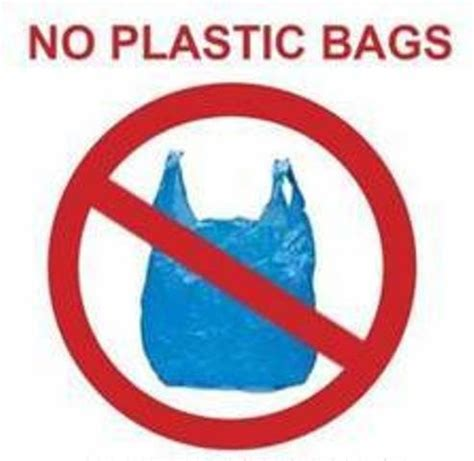 Plastic should be banned, Sample of Essays
